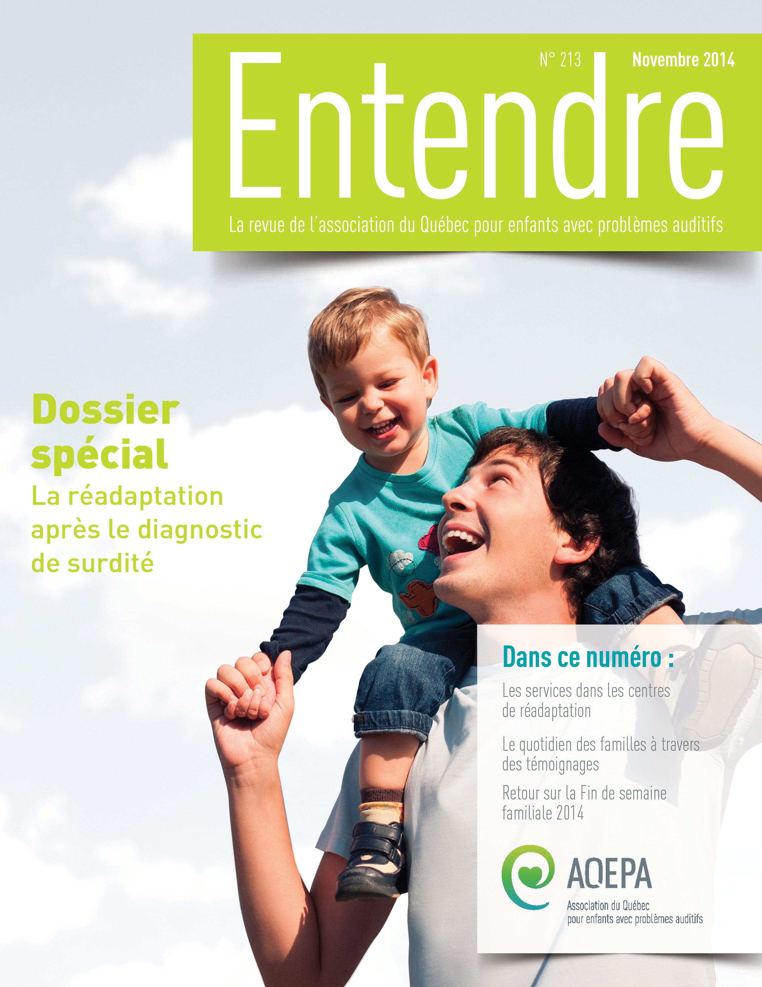 cover 213