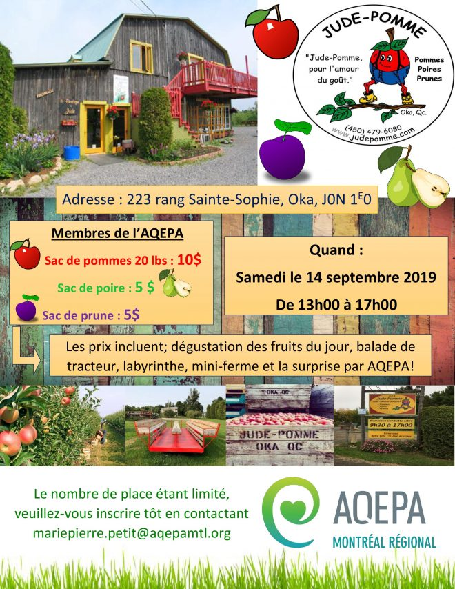 AQEPA Montréal Régional : Cueillette de pommes